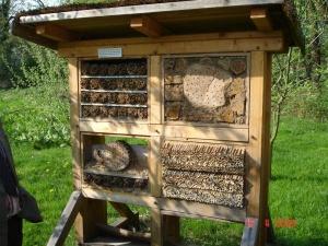 Bau eines Insektenhotels / Wildbienen